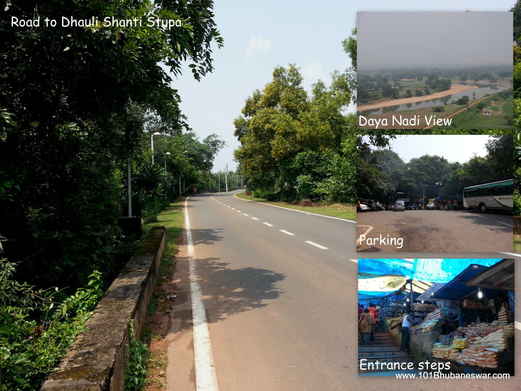 Road to Dhauligiri