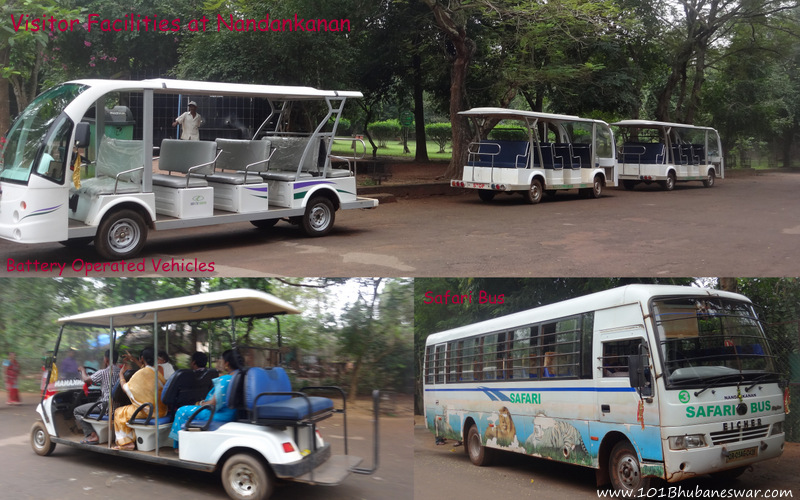 Visitor Facilities - Battery Operated Vehicles and Safari Bus