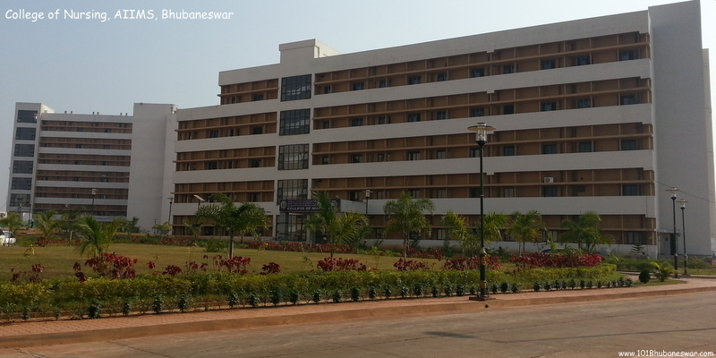 College of Nursing, AIIMS, Bhubaneswar