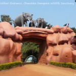 #007 – Visit Deras Dam, Jhumka Dam and Chandaka Dampara Elephant Sanctuary