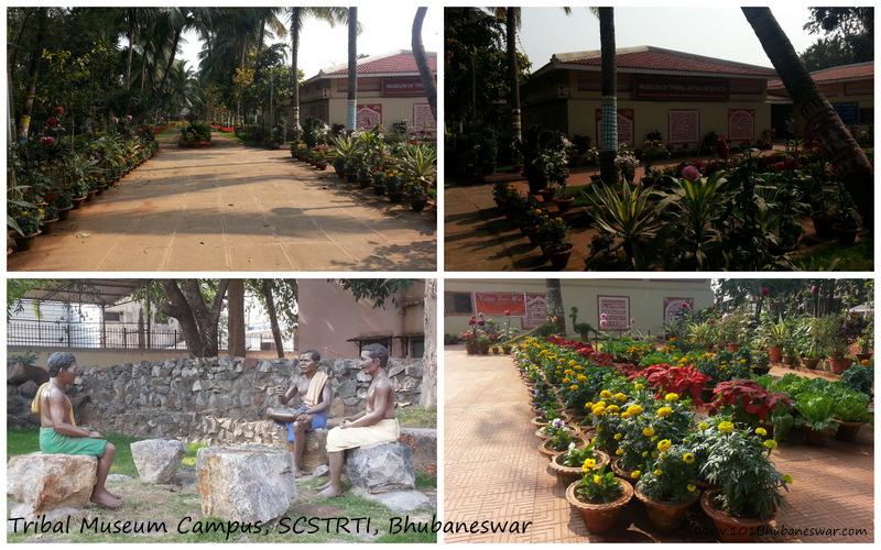 Tribal Museum Campus, Bhubaneswar