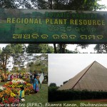 #013 – Visit Ekamra Kanan Park – The Regional Plant Resource Centre