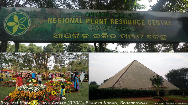 Regional Plant Resource Centre (RPRC), Ekamra Kanan, Bhubaneswar